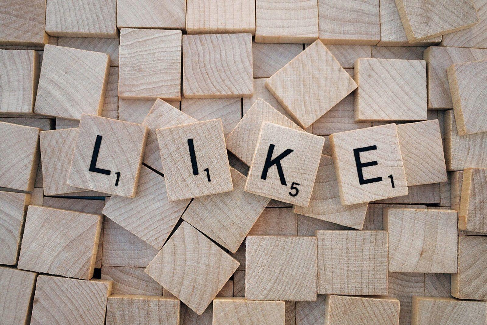 coordonnateur des médias sociaux